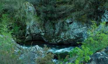 Sobreirais do Arnego - Red Natura 2000 - AGOLADA